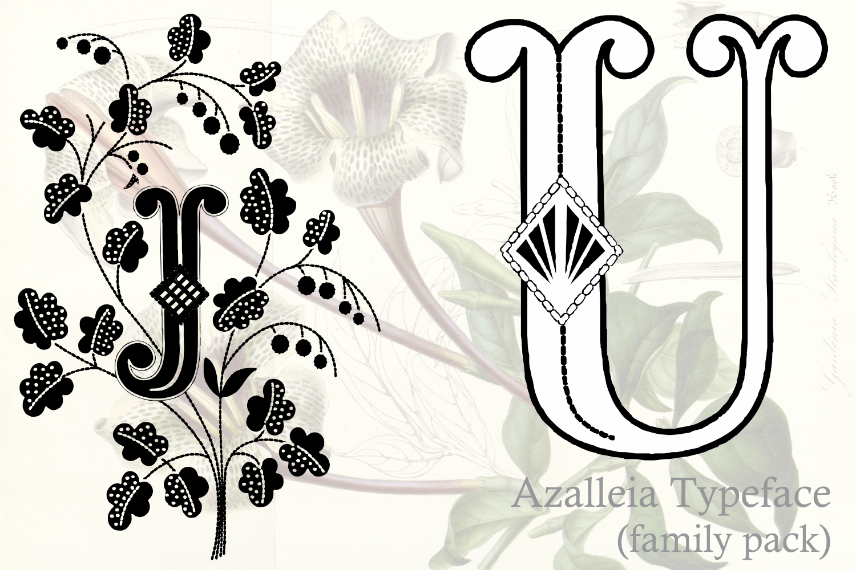 Azalleia Typeface Family Pack example image 2