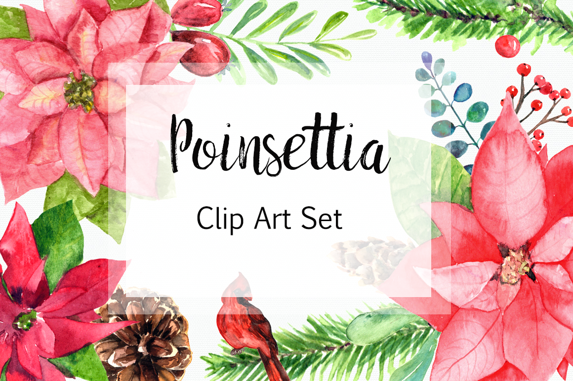 Watercolor Poinsettia Clip Art Set example image 1
