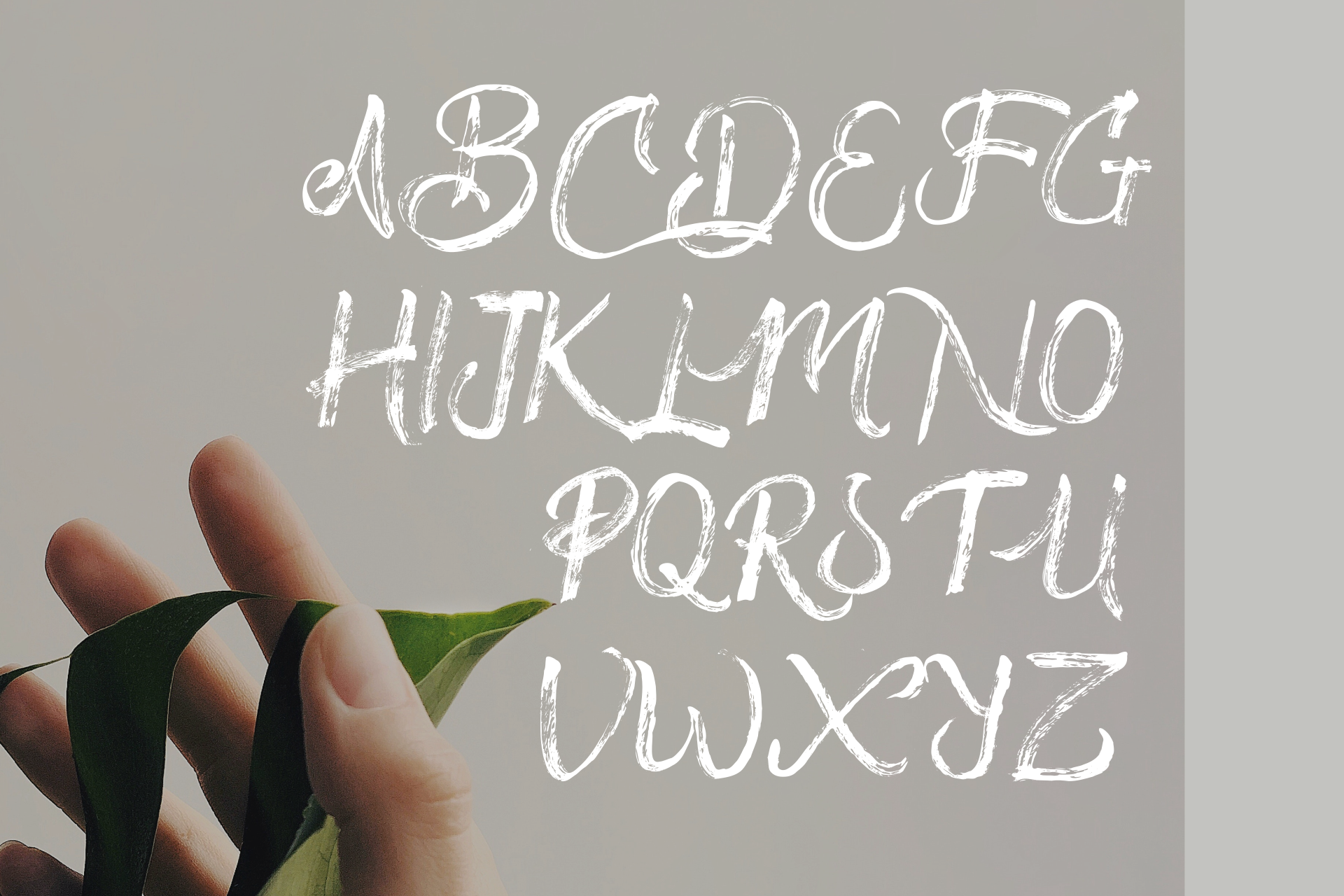 Drillmaster Handbrush Typeface example image 8