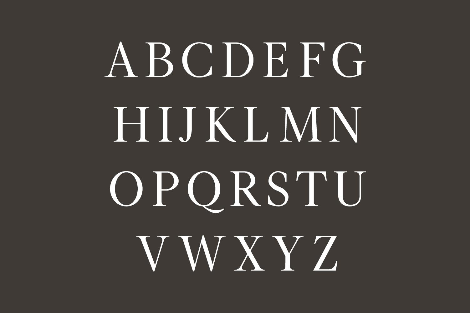Hughe Serif Font Family example image 2