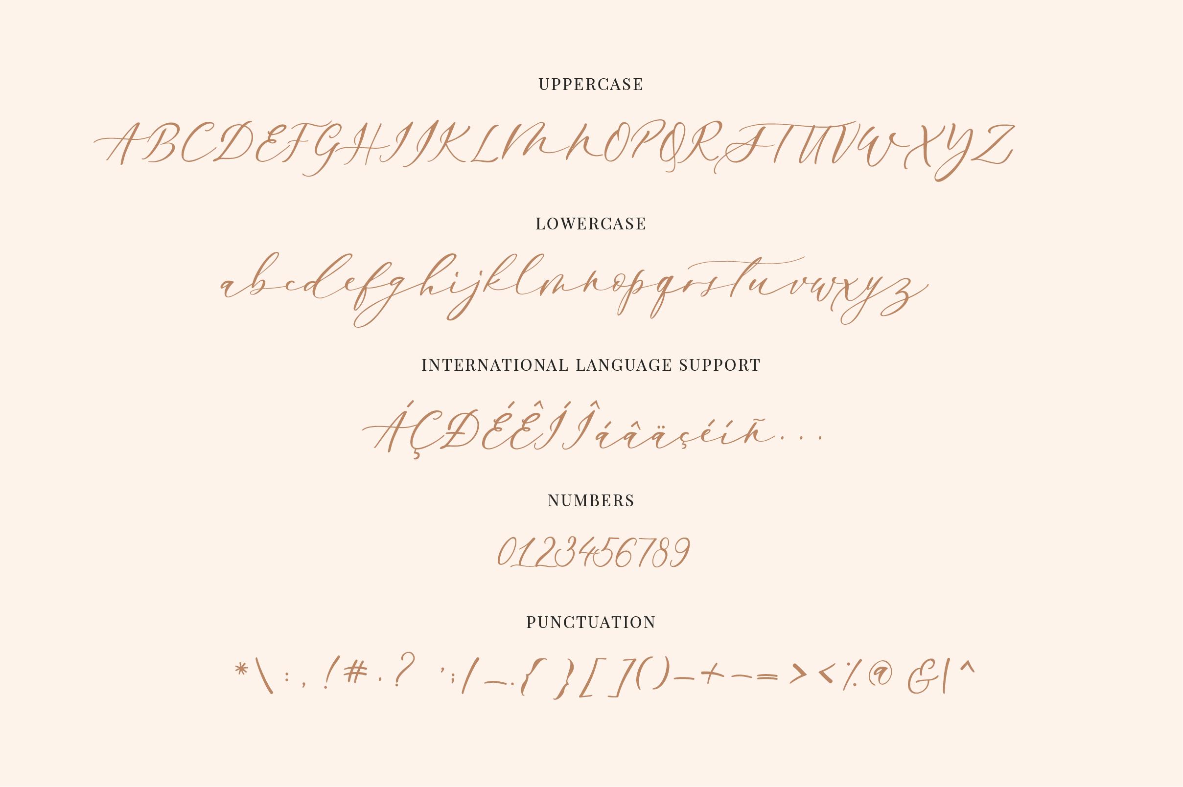 Enchantress | Luxury Font example image 5