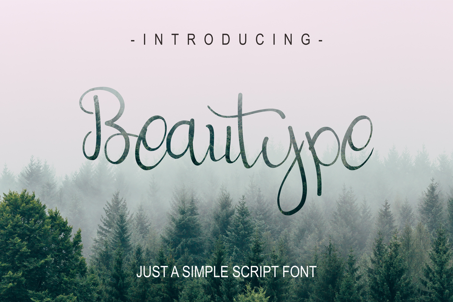 Beautype - Simple Script Font example image 1
