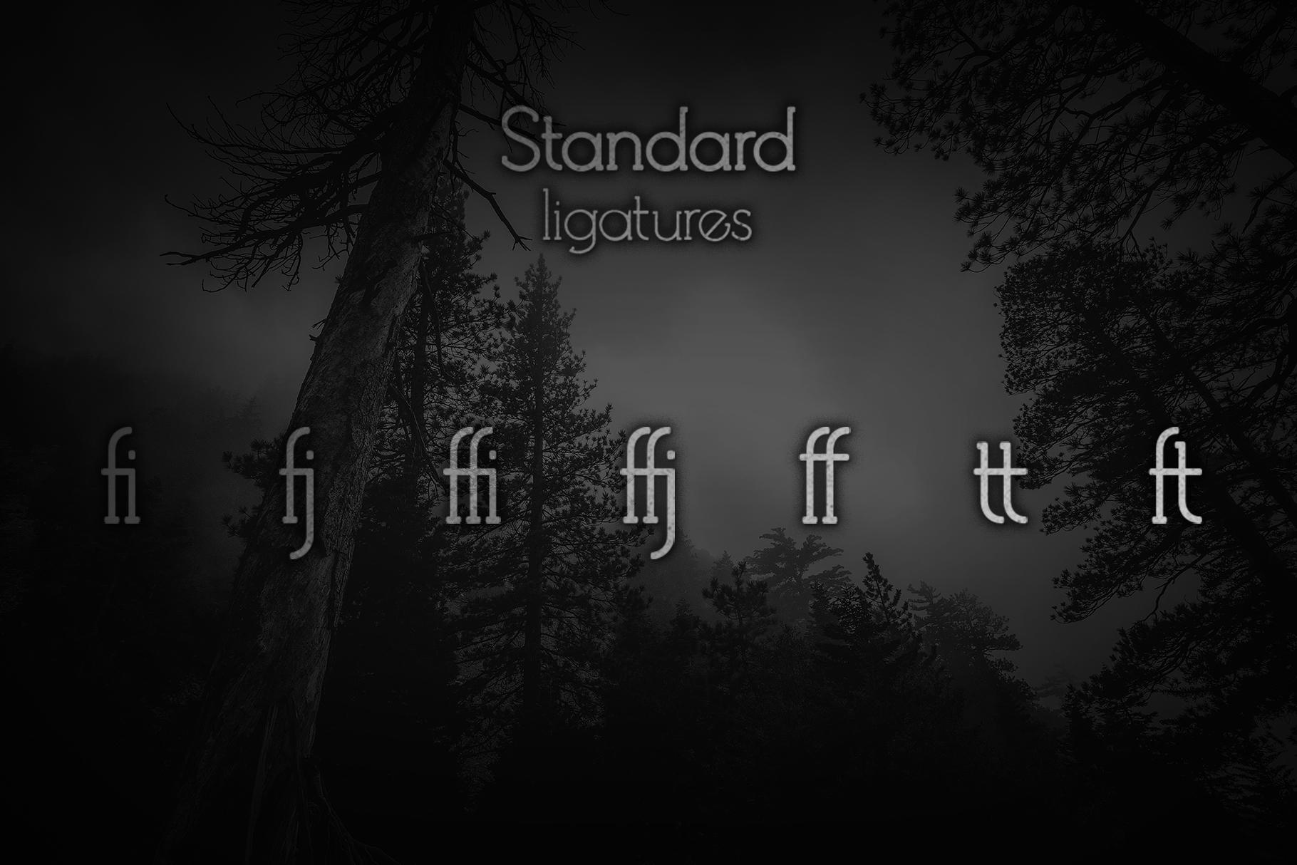 Debock Rounded Sans & Serif Font example image 5