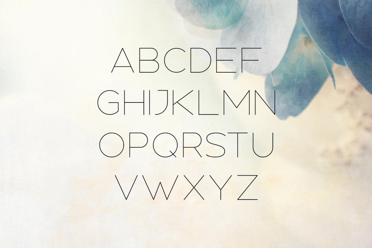 Nectar Typeface example image 2