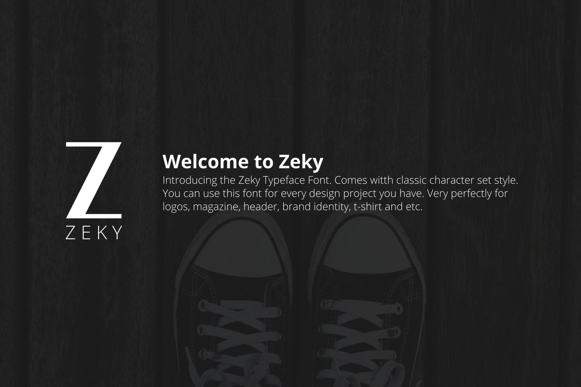 Zeky Typeface Font example image 2