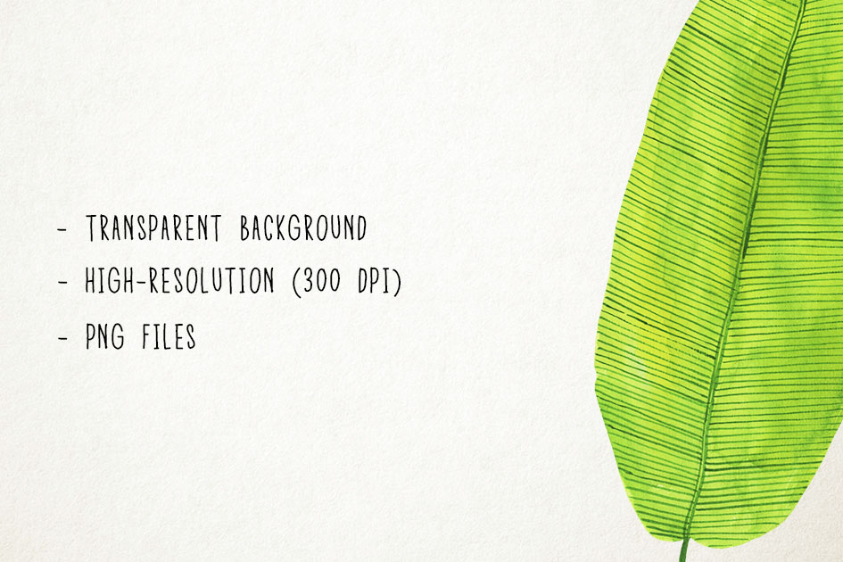 Watercolor Tropical Leaves Clipart, Palm Leaves Clip Art example image 3