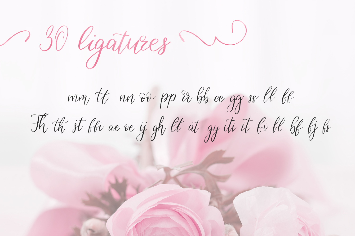Birdy Roses | Script font and Swashes example image 10