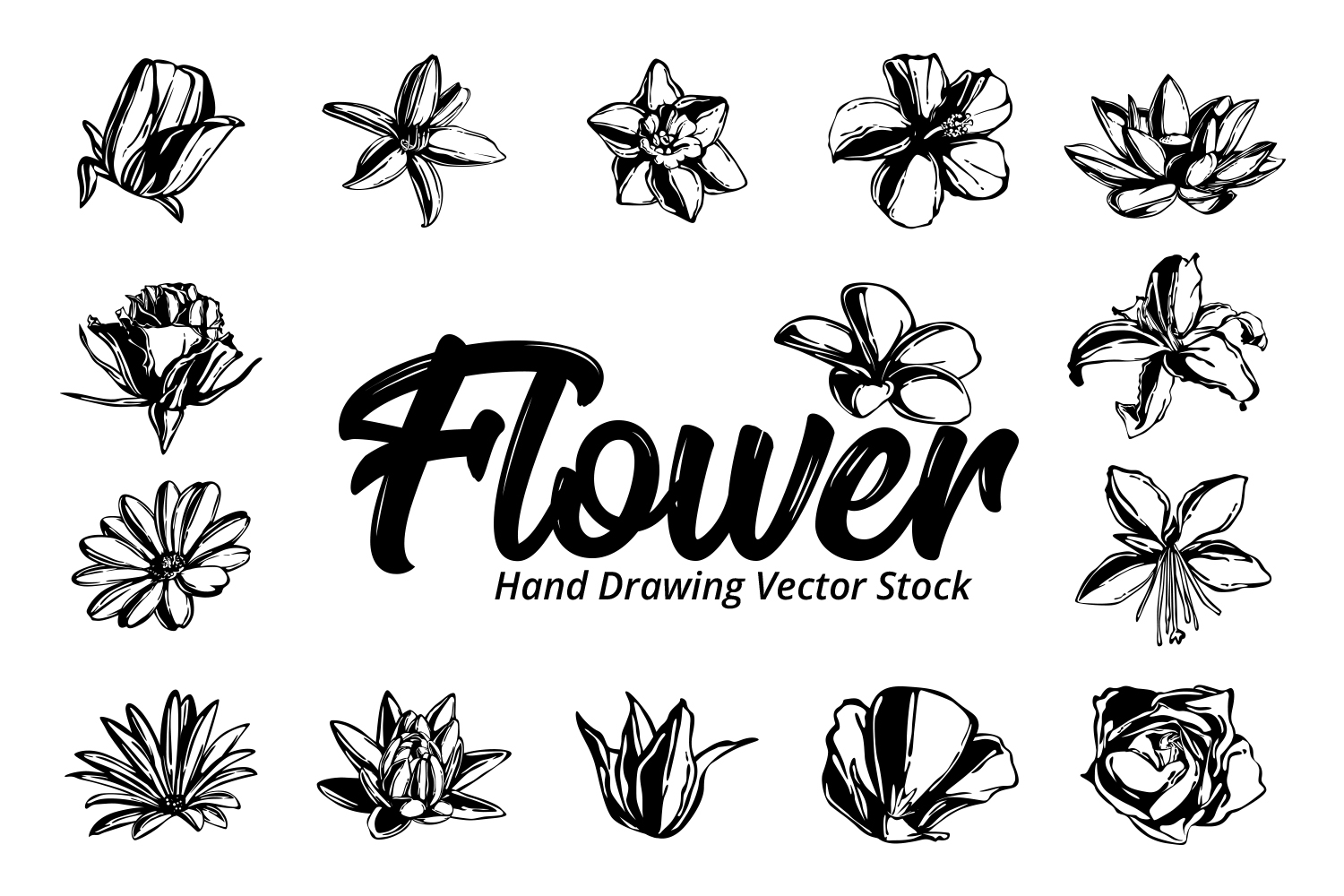 Flower Hand Drawing Vector example image 1