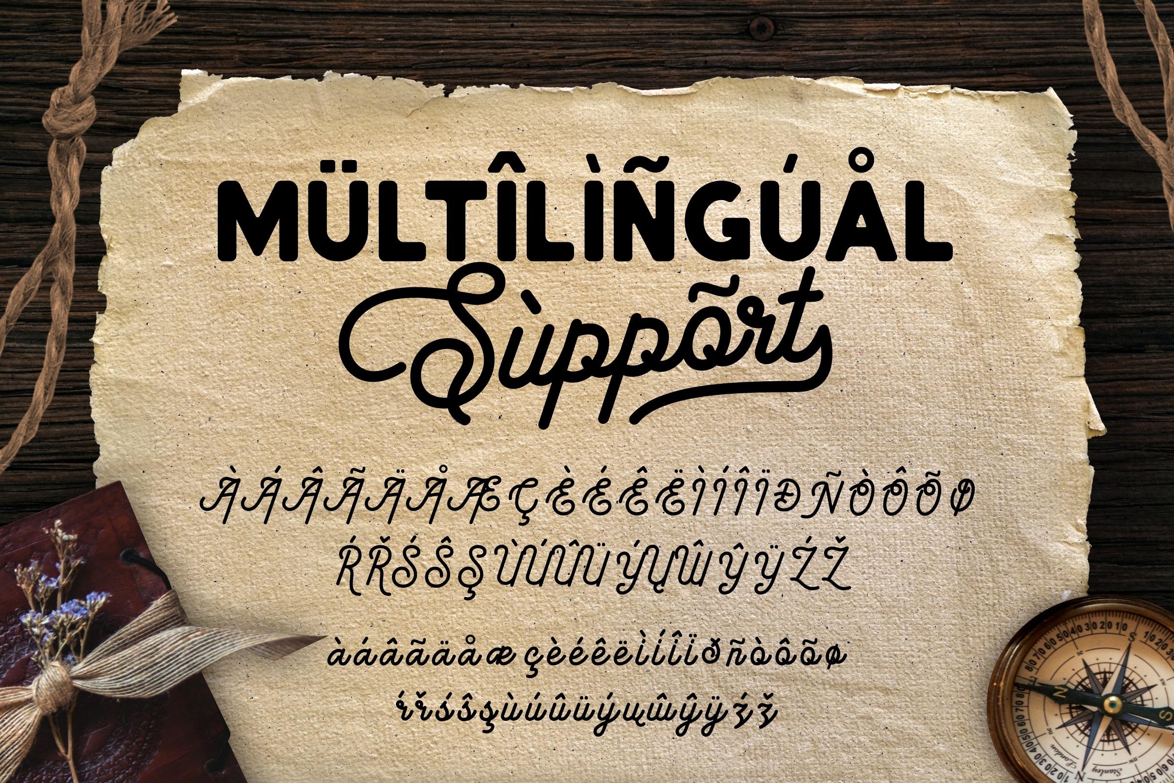 American Lemon Font Duo example image 10