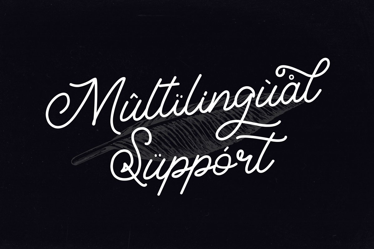 Elegant Script Collections example image 28