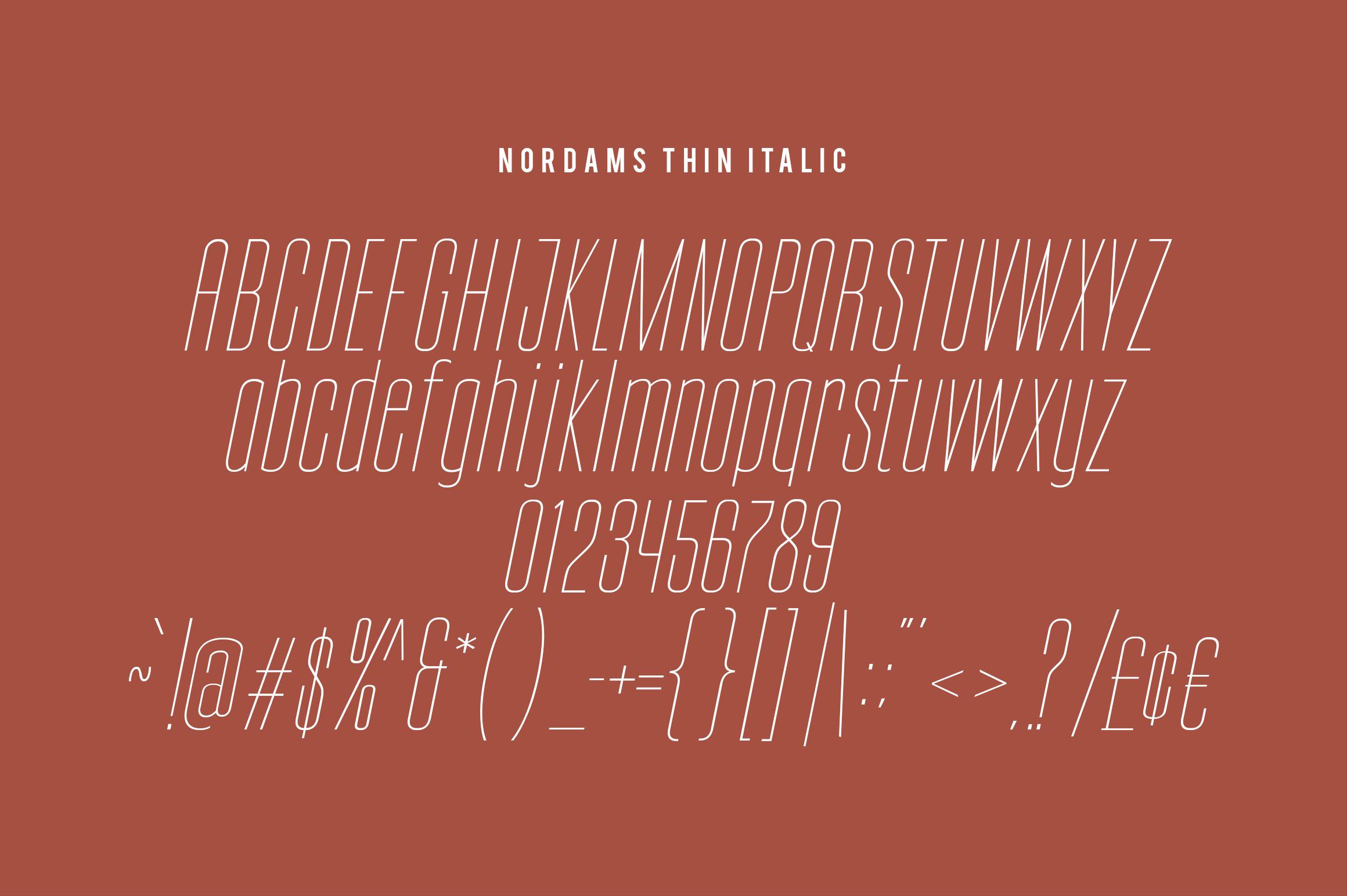 NORDAMS - Sans Serif example image 17