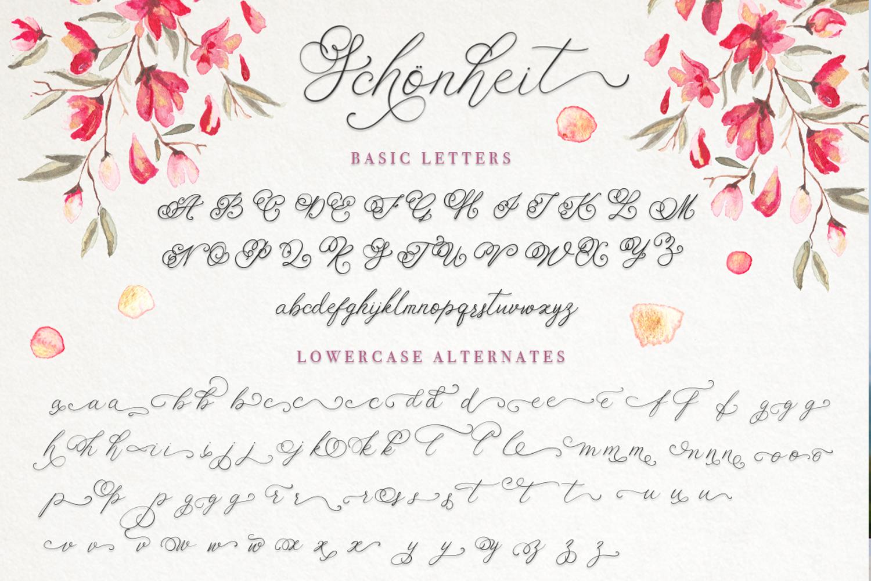 Schonheit font & watercolors. example image 8