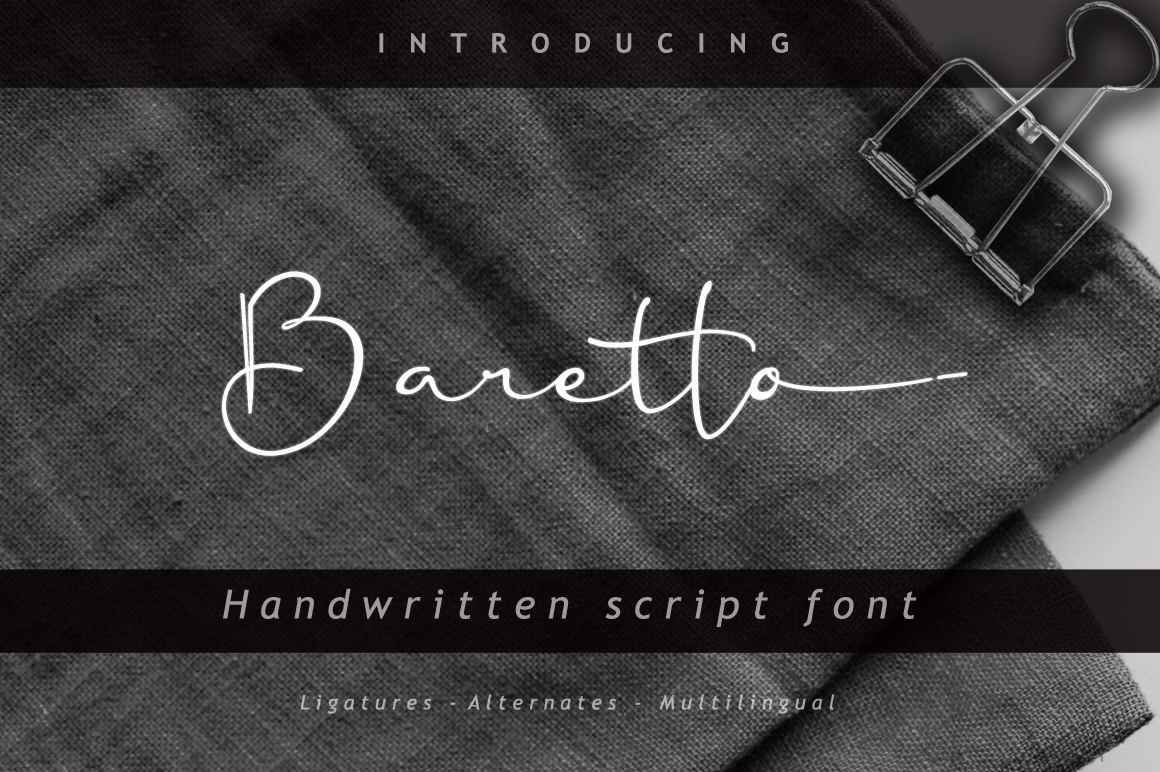 10 in 1 - font bundle example image 8