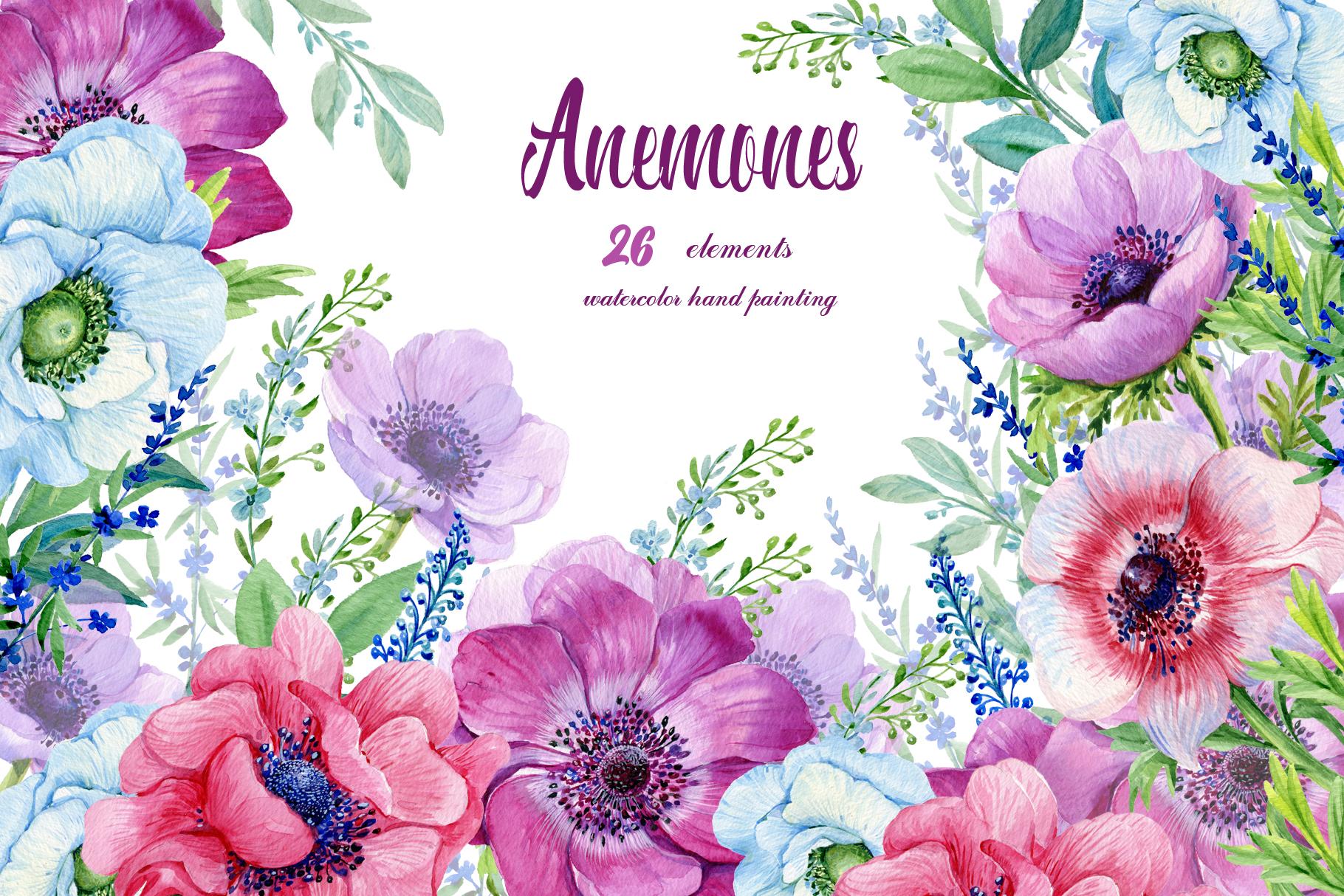 Anemones Watercolor . Flowers Clipart . Floral Elements ... (1820 x 1214 Pixel)