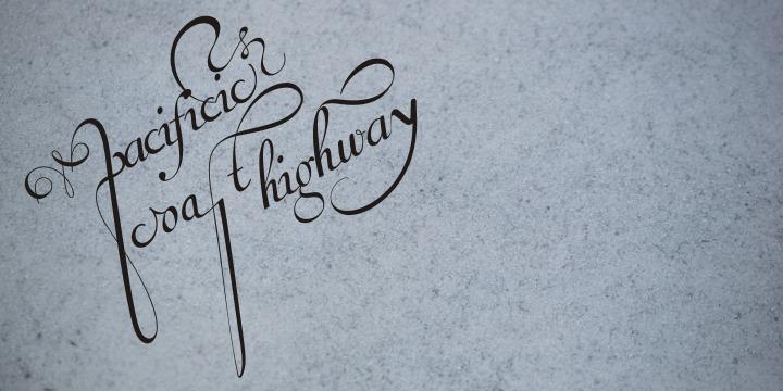 Van den Velde Script PRO example image 10