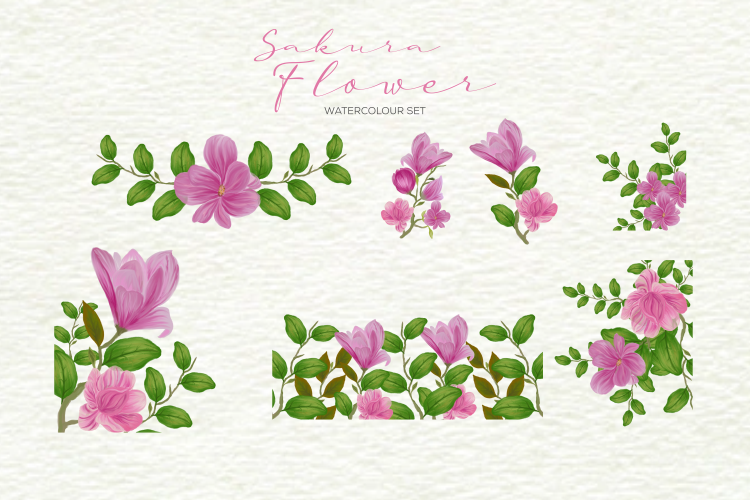 Sakura Flower Watercolour example image 3