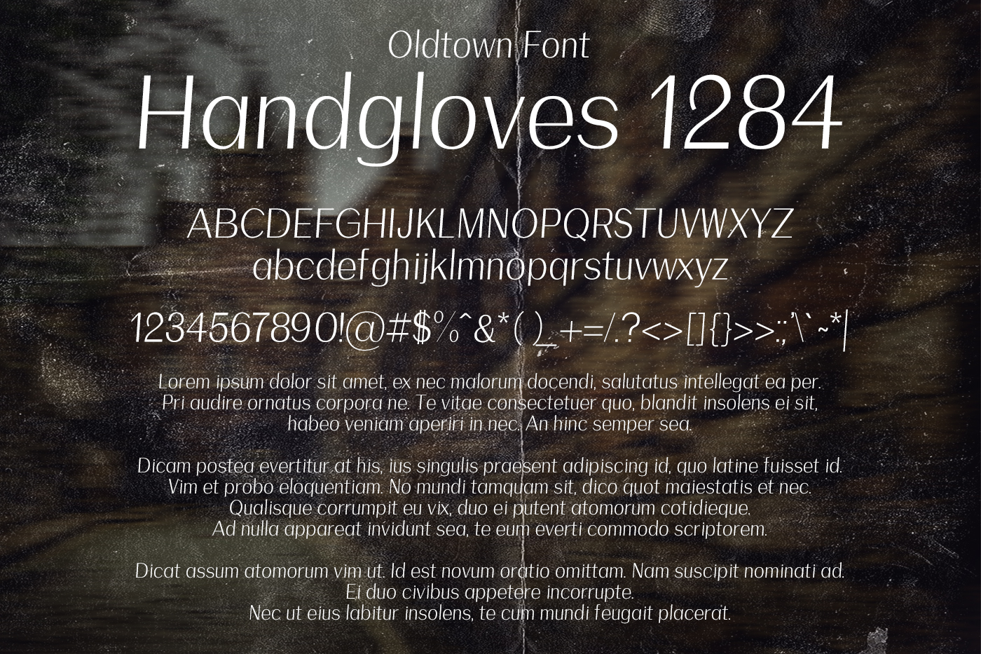Oldtown Font example image 2