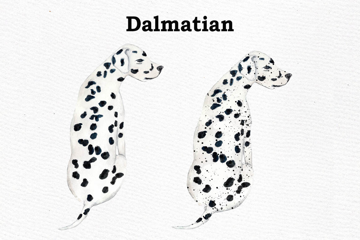 Dogs Clipart,Dog breeds Pet clipart,Watercolor dogs clipart example image 10