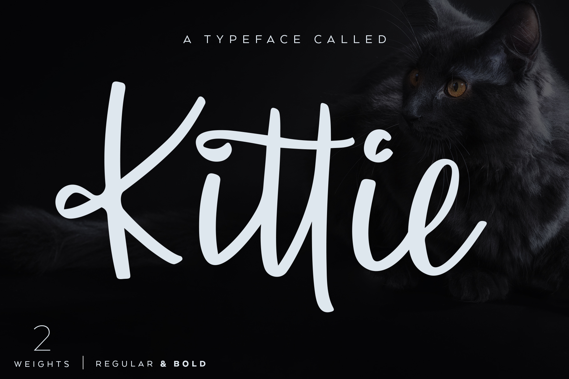 Kittie | Regular & Bold example image 1