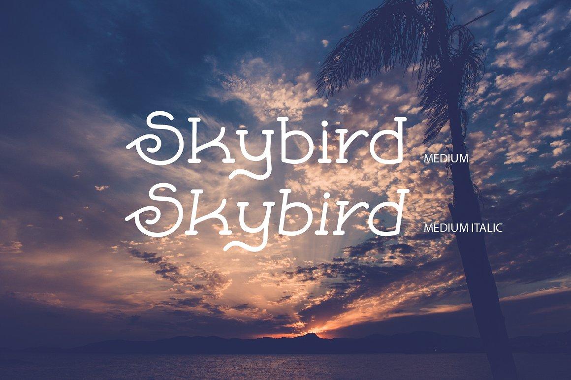 Skybird Family - Crazy, unique & retro example image 4