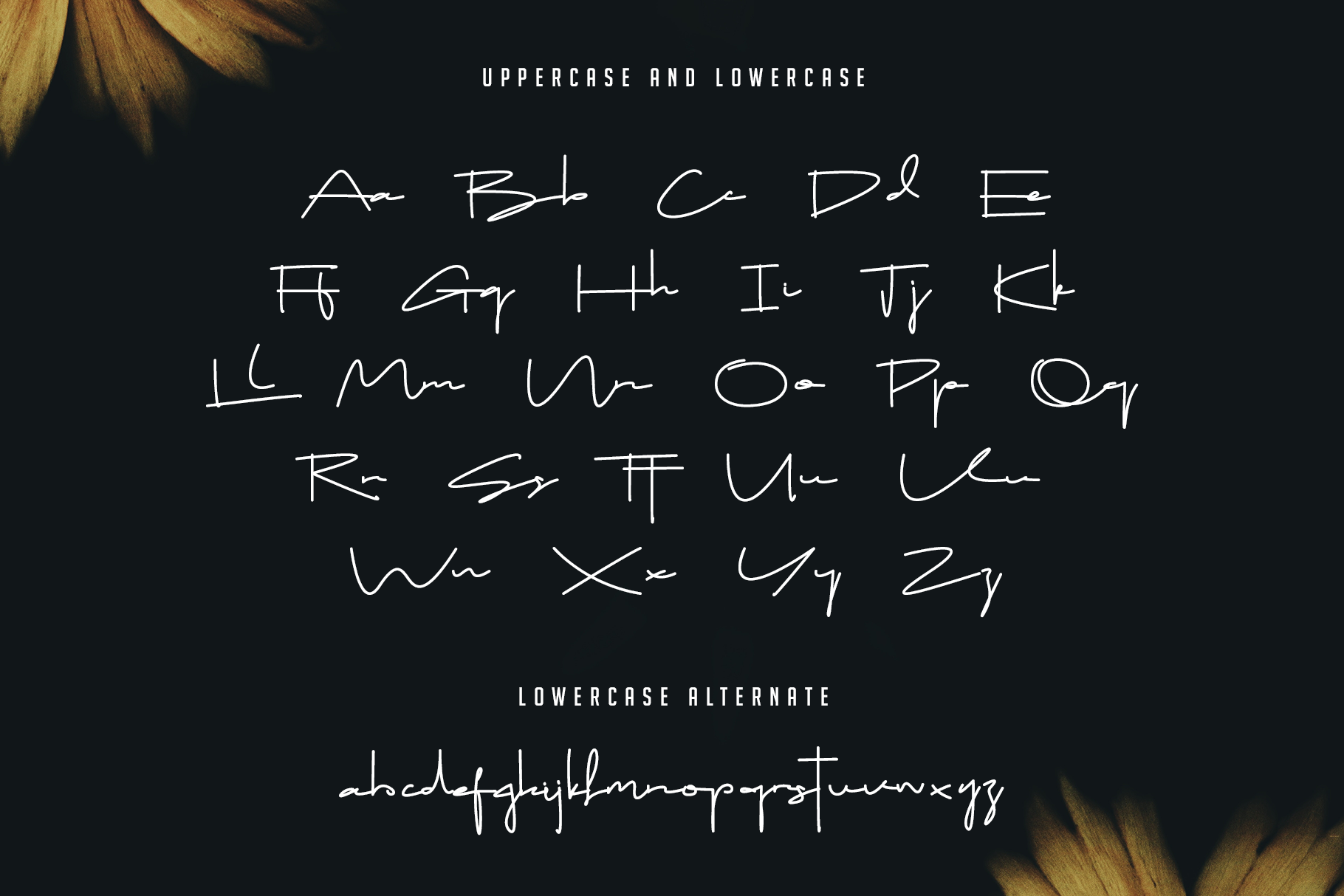 Drop Stay - Signature Font example image 12