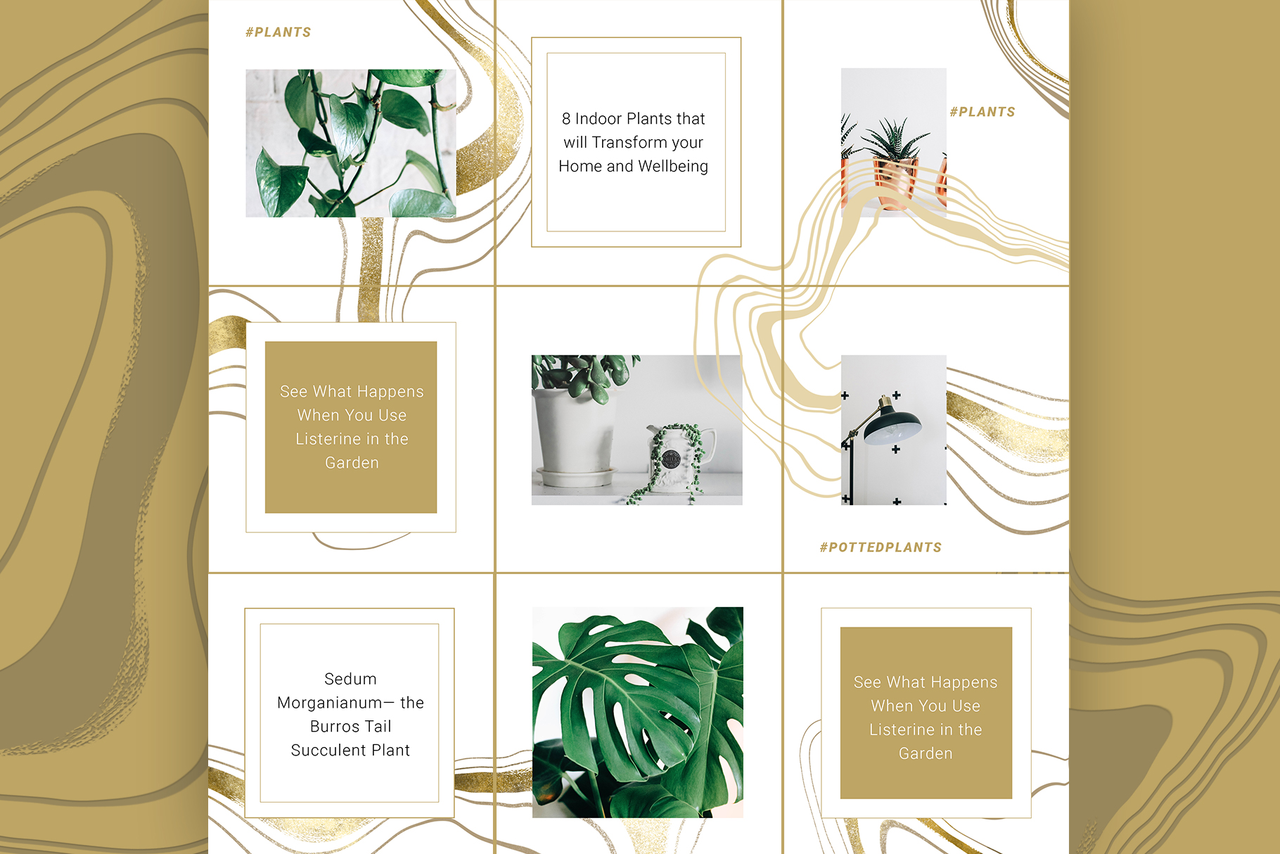 Female Business Instagram Templates example image 5