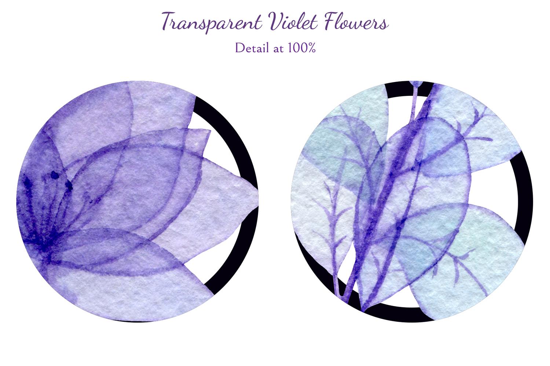 Transparent Violet Flowers example image 7