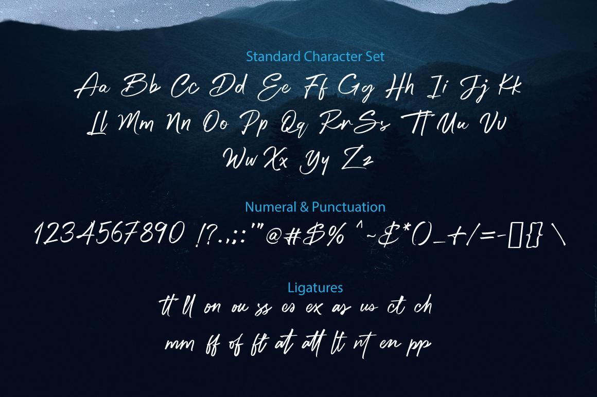 Bigtone Script example image 14