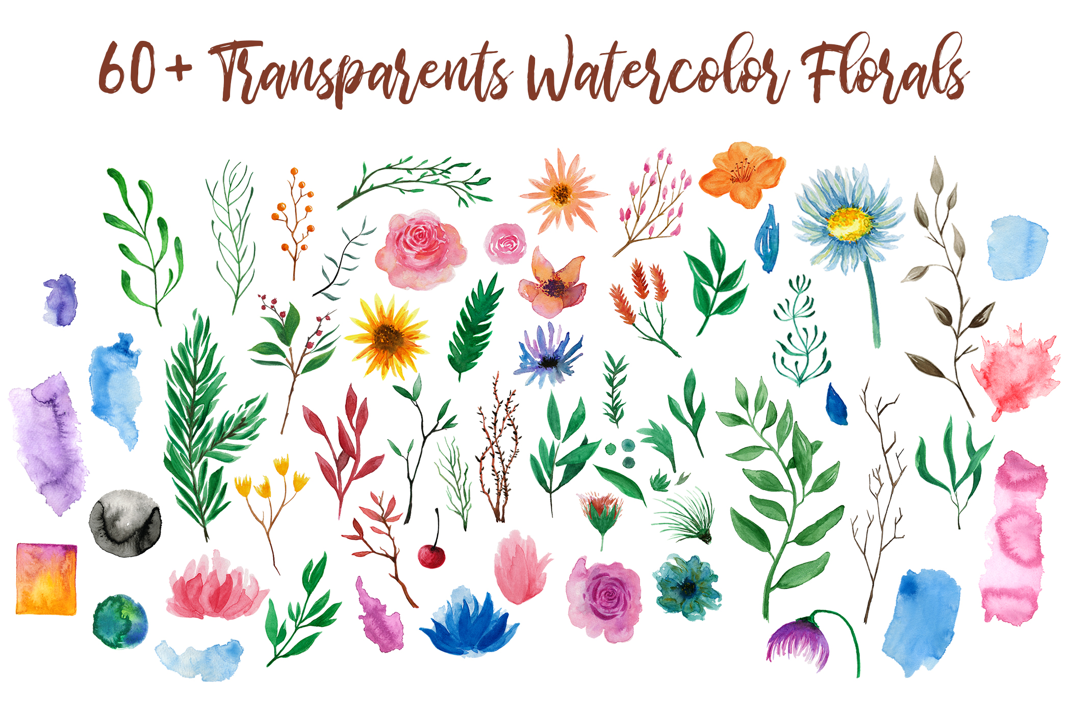 Watercolor Floral Essence Clip Art Pack example image 4