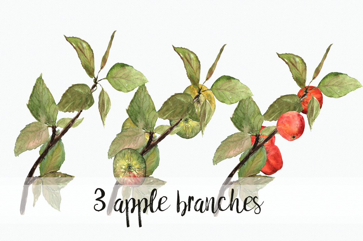 Watercolor Apples ClipArt Collection example image 3