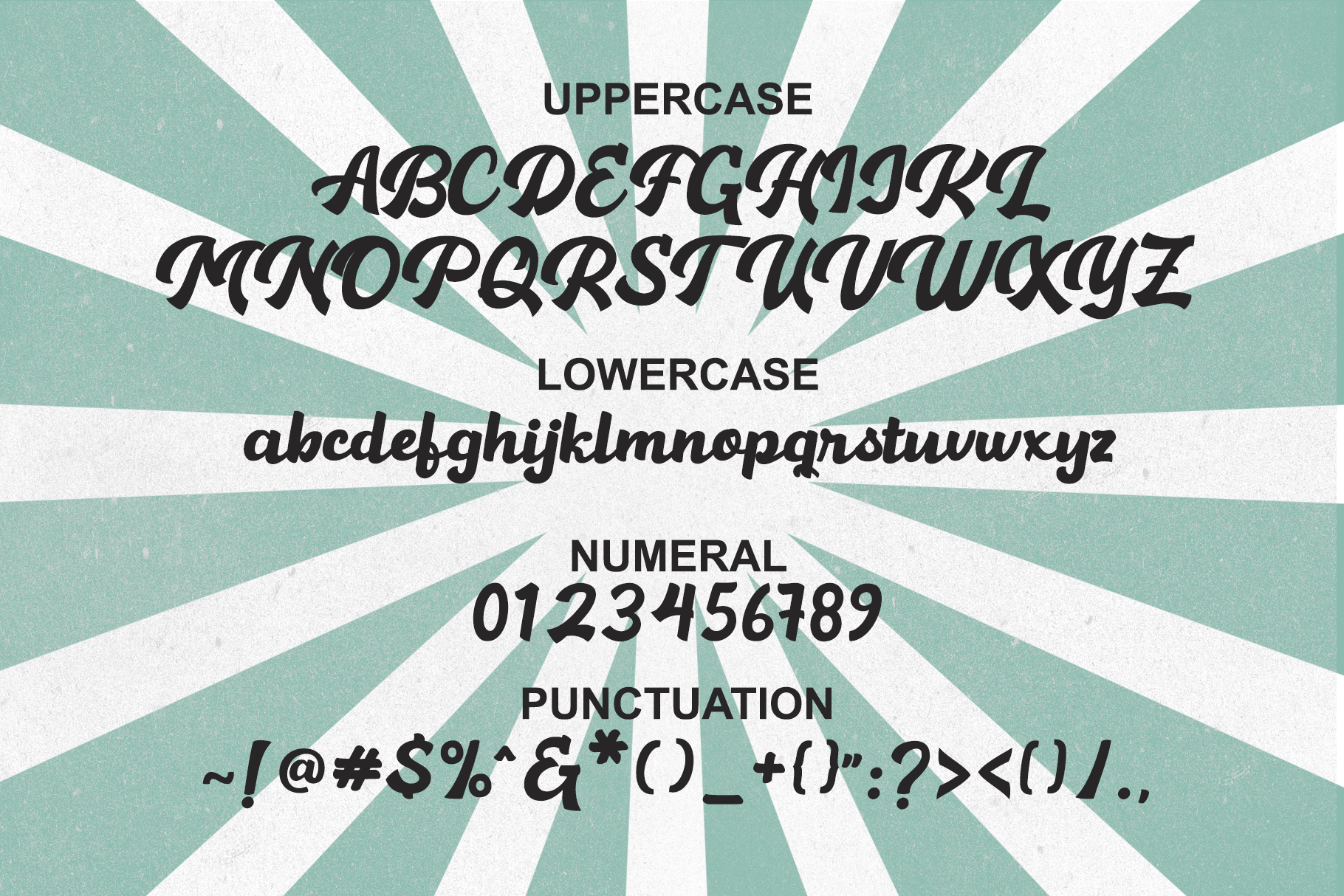 Hamelin Script Font example image 7