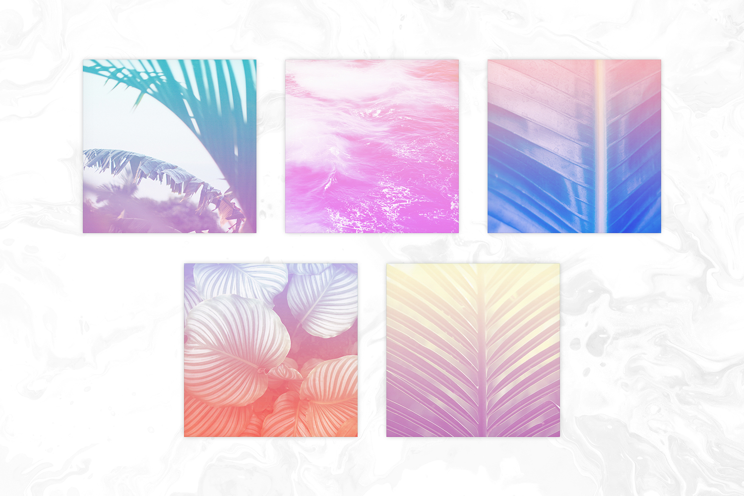 Pastel Ombre Tropical Photos Digital Paper example image 3