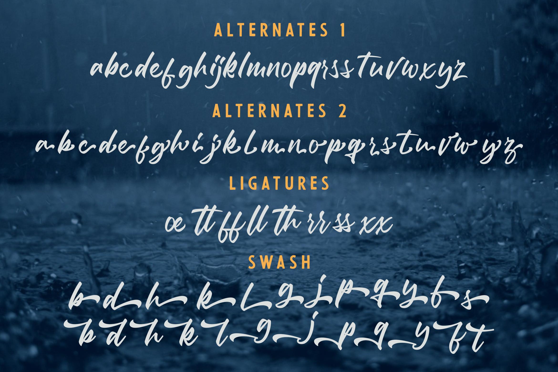 Debtos - Script example image 8