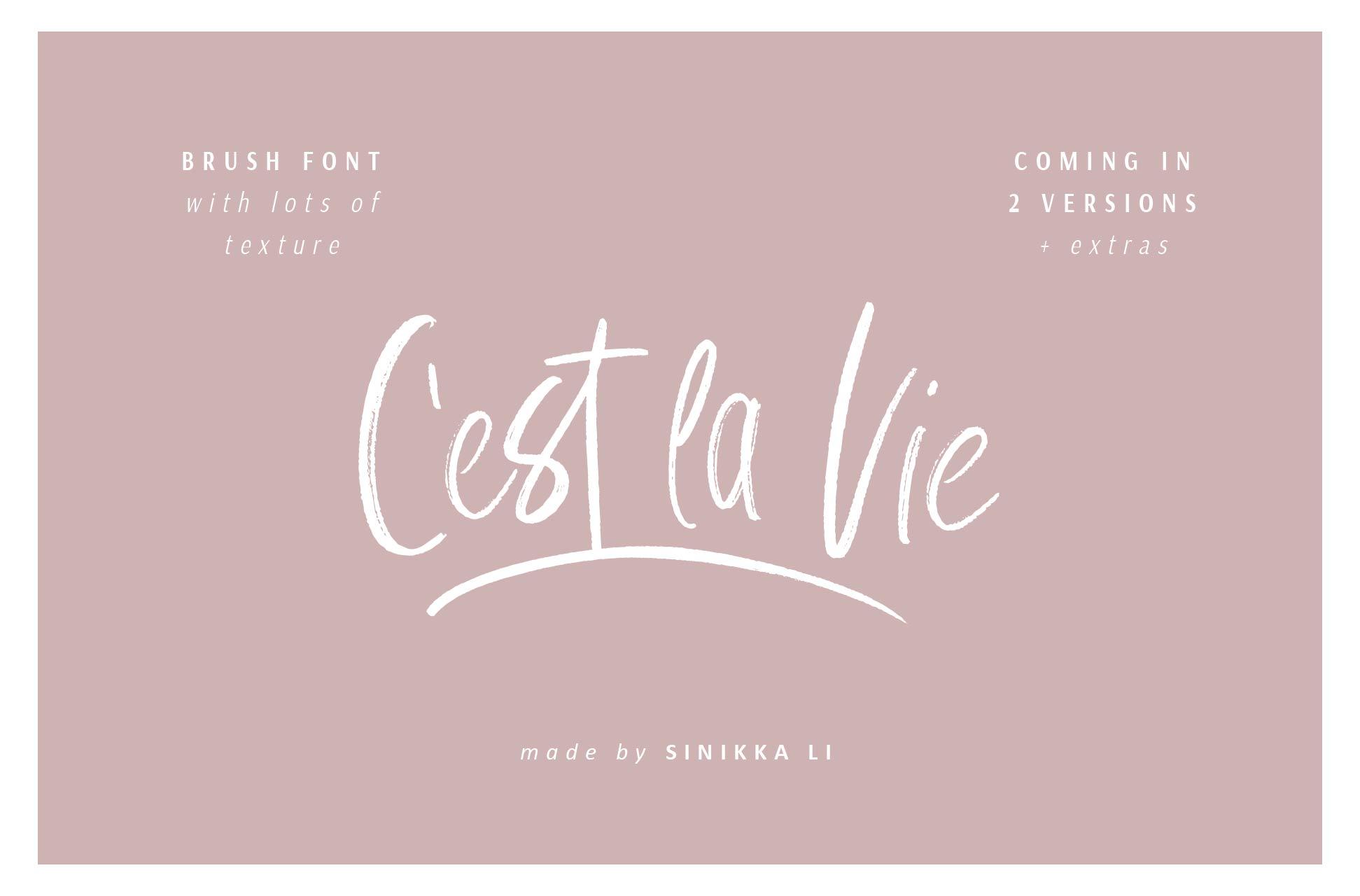 C'est La Vie   Font + Extras example image 1