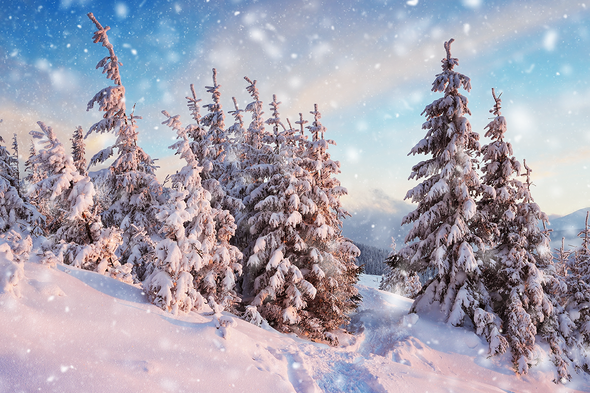 Snow Photoshop Action example image 2