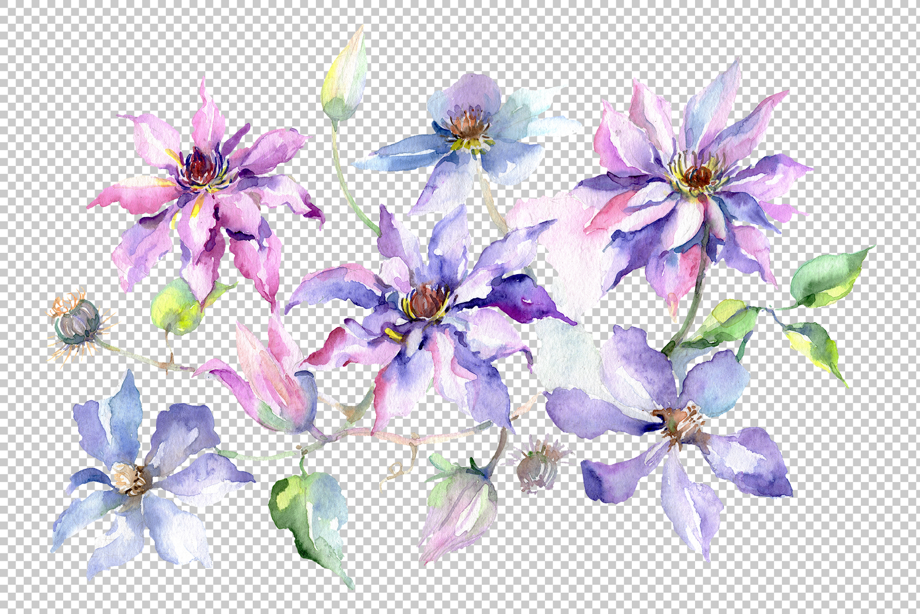 Branch of gentle purple flowers Watercolor png example image 2