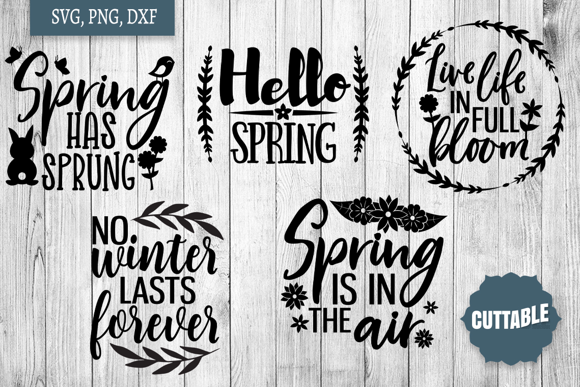 Spring SVG bundle, Spring quote cut file, welcome spring svg example image 2