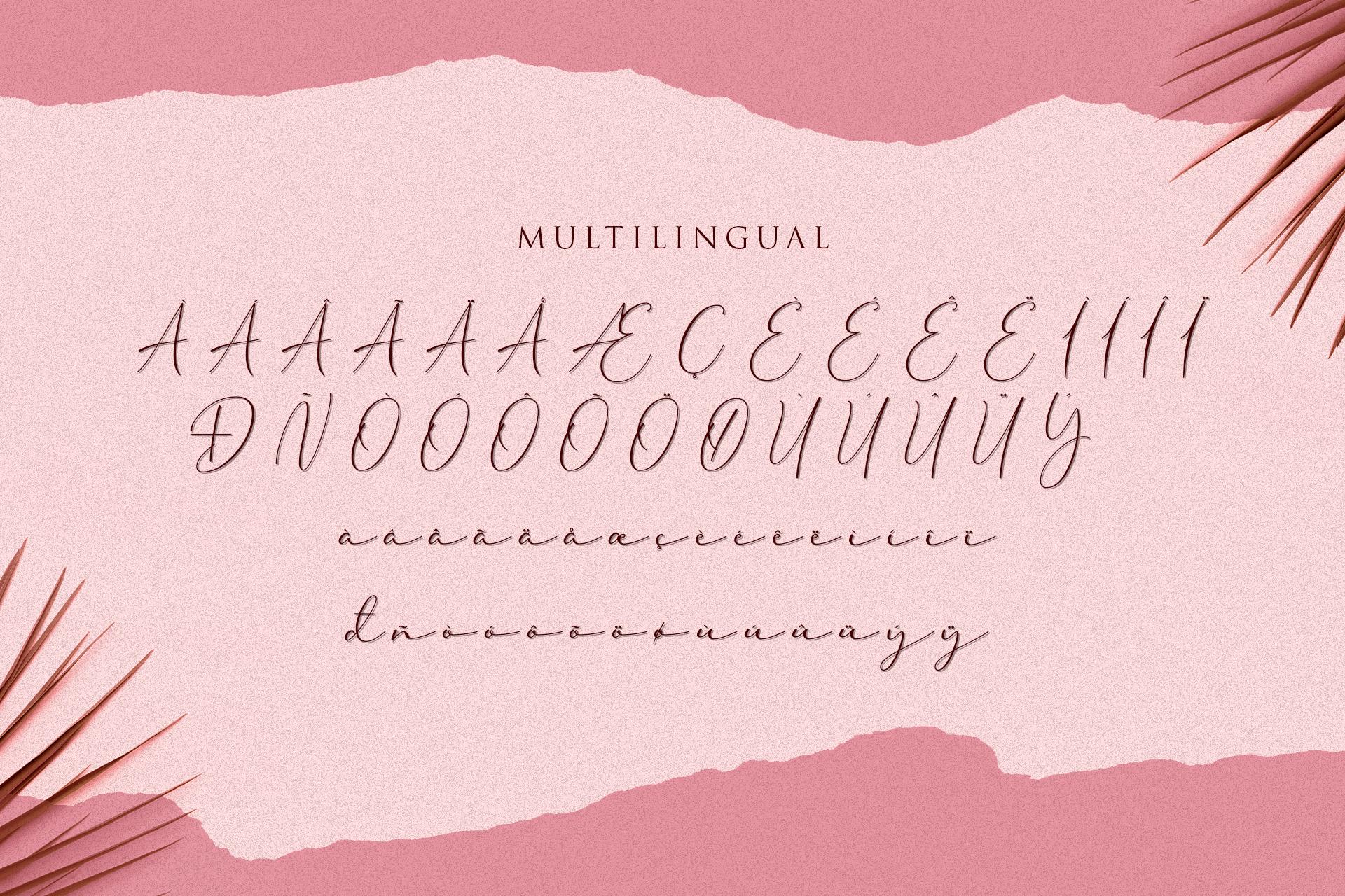 Cherolina-Lovely Elegant Script example image 11