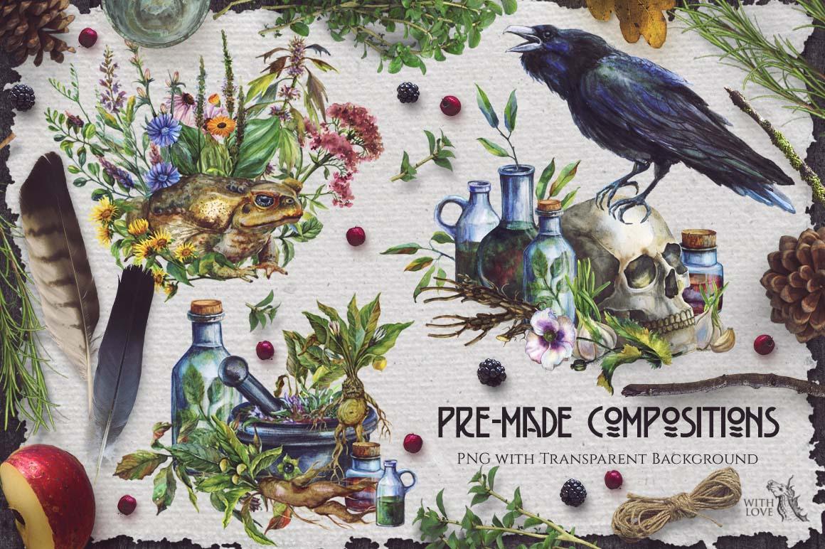 Watercolor Alchemy Medicinal Herbs example image 3