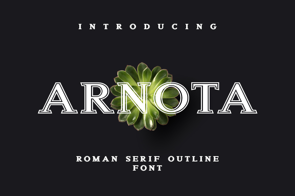 Arnota example image 1
