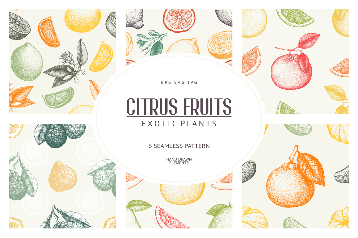 6 Seamless Citrus Fruits Pattern example image 1