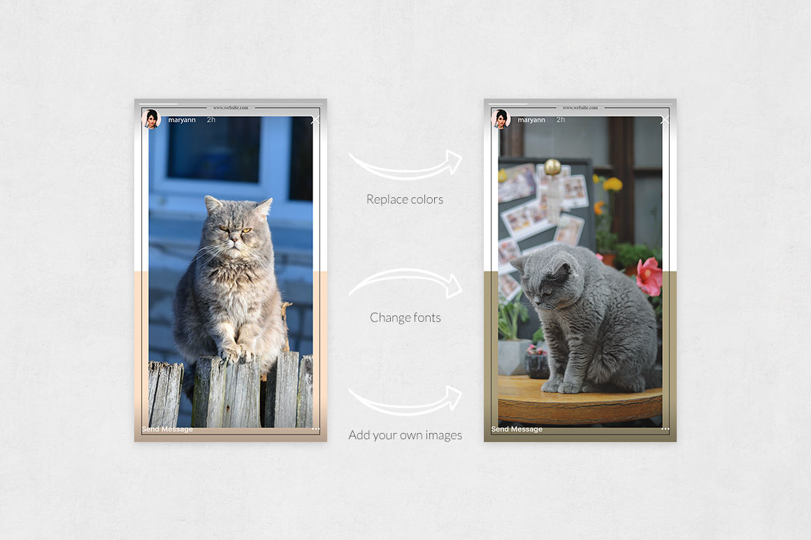Cats Animated Instagram Stories example image 5