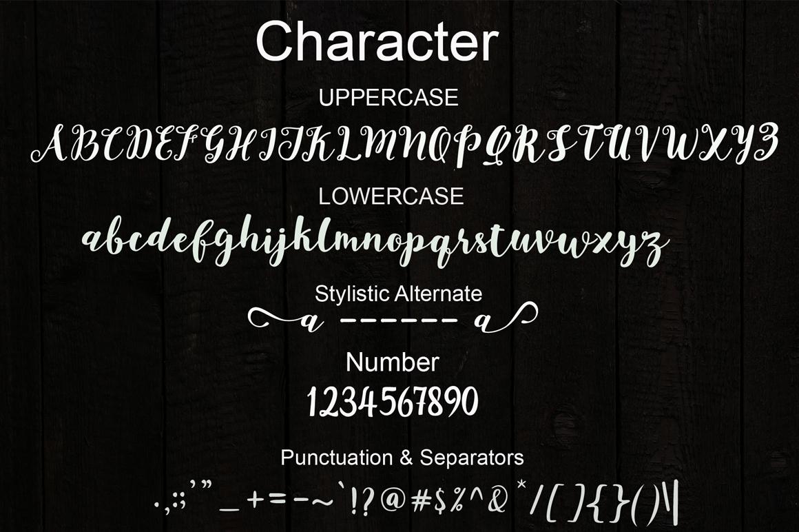 joshan brush script example image 7