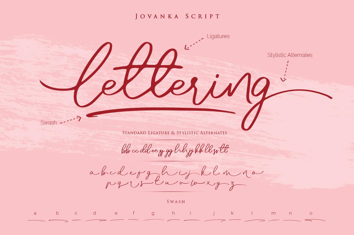 Jovanka Script Font example image 2