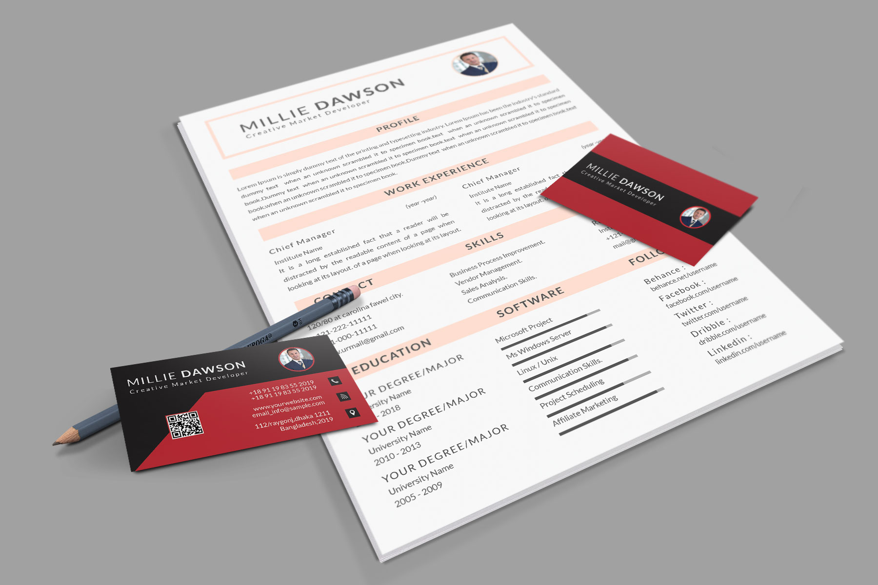 Professional Cv Resume Bonus business card Word/PSD,AI example image 3