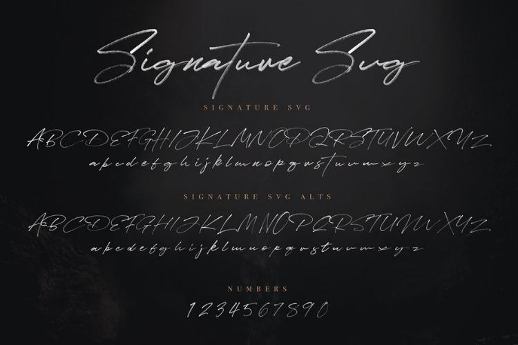 JV Signature SVG - Opentype SVG FONT example image 2