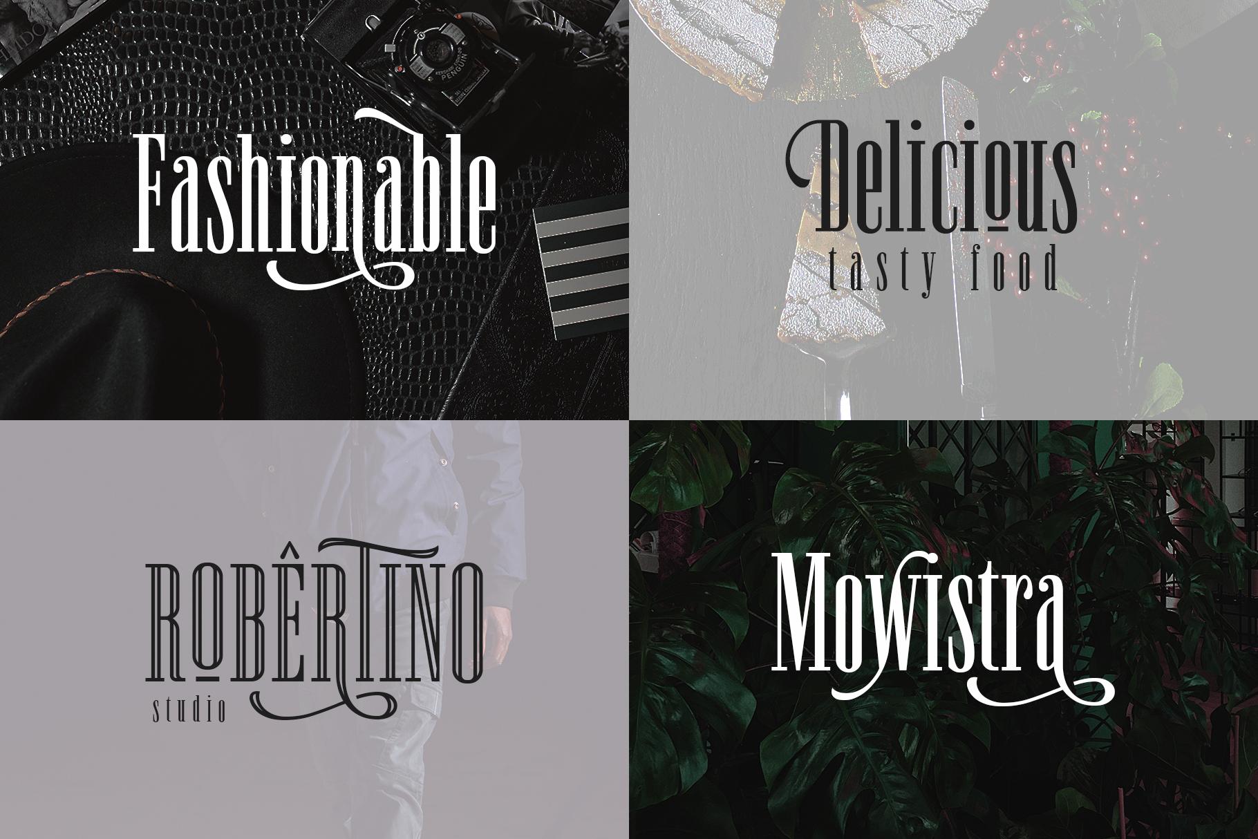 Newston - Stylish Serif Font example image 8