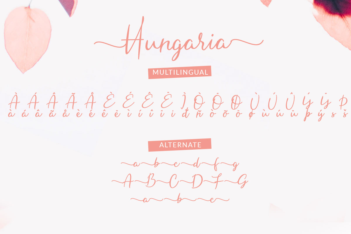 Hungaria - Sophisticated Script Font example image 7