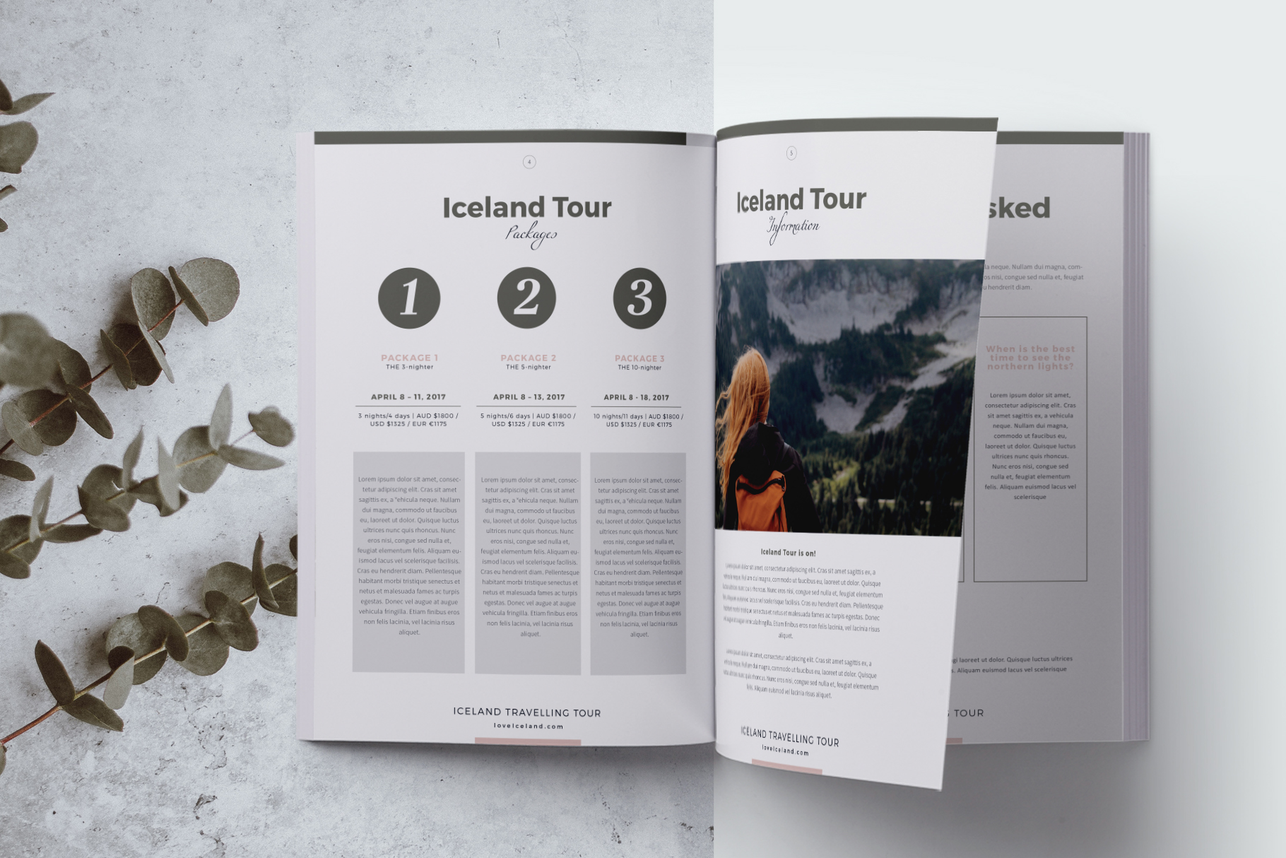 Travel Agency Guide example image 3
