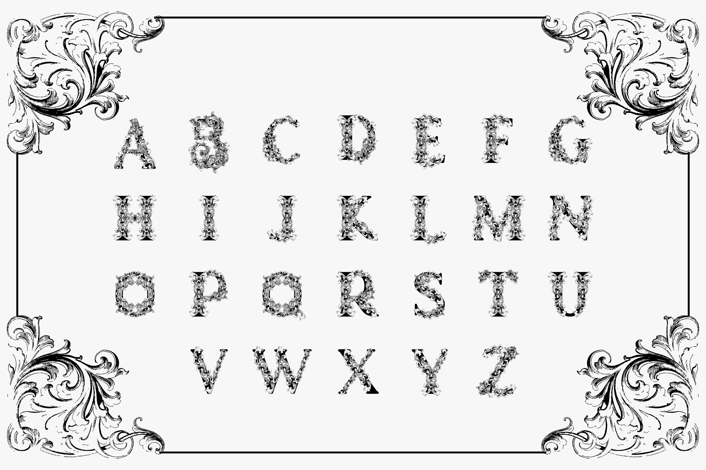 Badoet | Victorian Logo Fonts example image 5